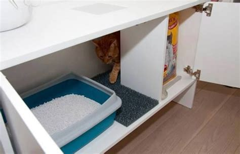cassetta gatto autopulente lettiera per gatti amano la privacy
