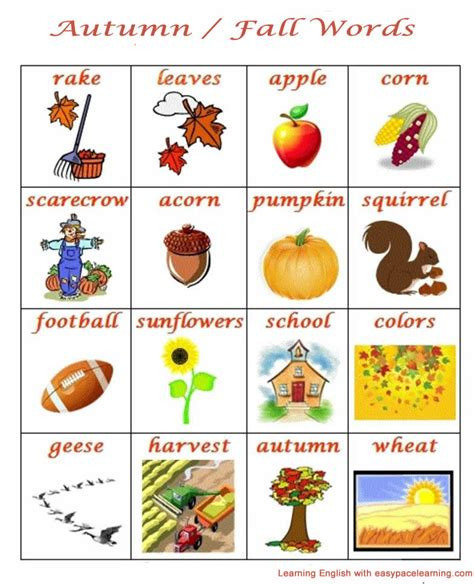 english words themes autumn and fall season english lesson