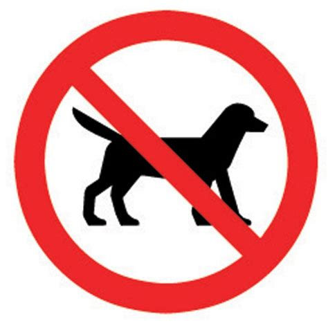 no dogs allowed sign the house nameplate company pvc self adhesive no dogs allowed sign h 100mm w 100mm