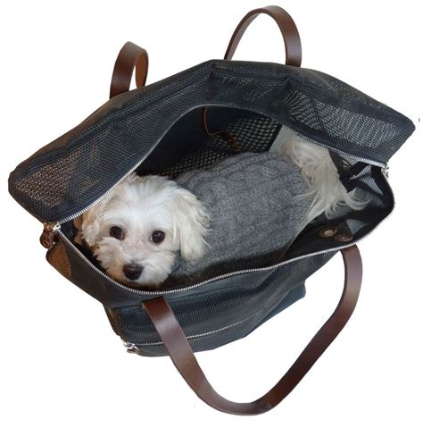 yorkie carriers 25 best ideas about carrier bag on carrier purse carrier and