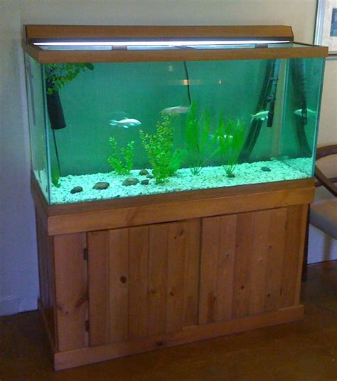 how to paint the background of your fish tank black my aquarium club