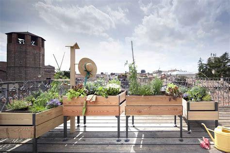 vasi per orto in terrazzo orto sul balcone o sul terrazzo farlo in 5 semplici passaggi