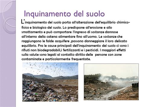 inquinamento alimentare istituto comprensivo largo castelseprio ppt