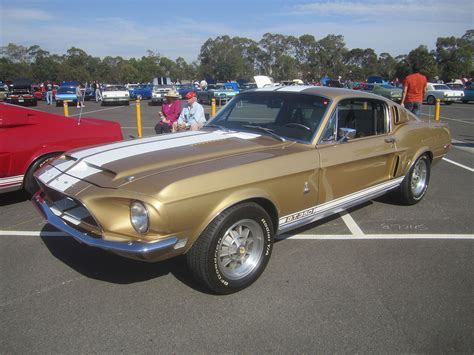 Mustang Auto Wiki by 2013 Shelby Gt350 Wiki Html Autos Post