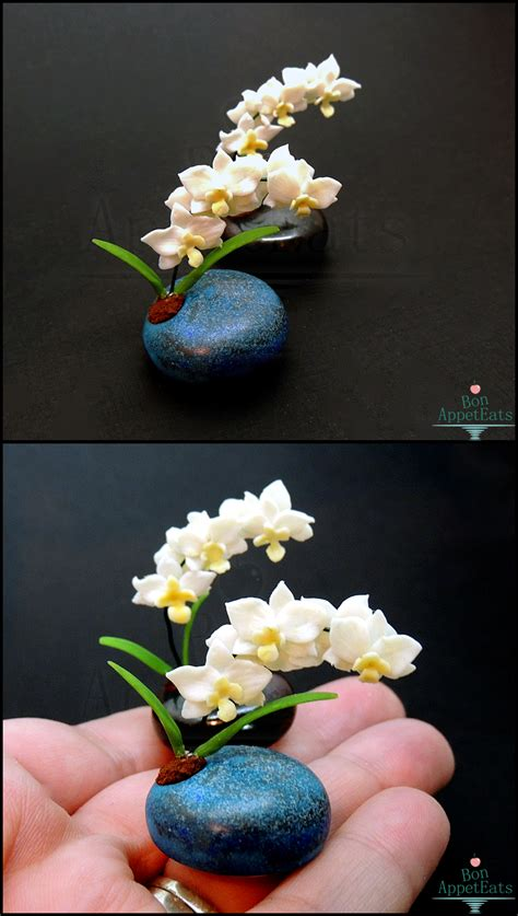 mother s day gifts miniature orchid pots by bon appeteats on deviantart
