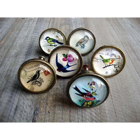 Owl Door Knobs by Bird Drawer Knobs Brass Effect Cupboard Door Handle Pull