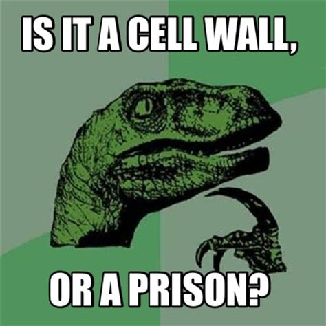Cell Meme - meme creator is it a cell wall or a prison meme