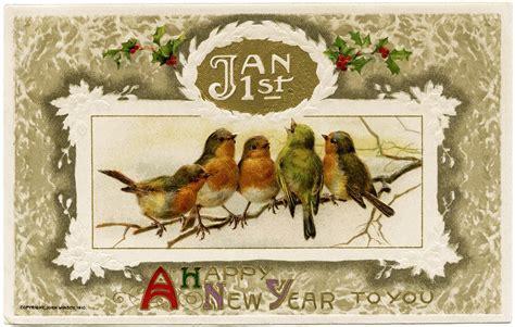 winsch birds new year postcard design shop