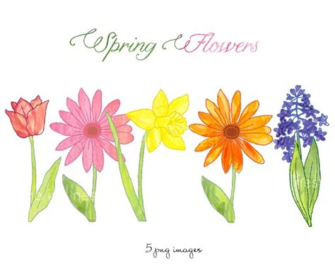 spring clip art  coloring page