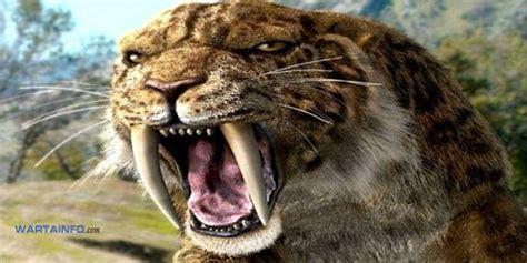 film dokumenter binatang buas 6 binatang purbakala pemangsa terganas ini hilang akibat