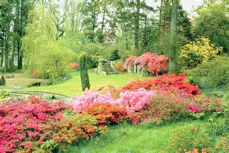 quelles plantes 224 fleurs tailler en avril