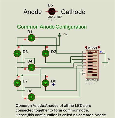 led anode cathode identification proteus tutorial using single and digit segment displays electronic circuits and