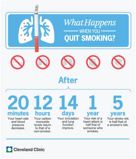 Quit Smoking Clinics In Usa I Stop Quit Smoking Guide | tips to help you quit smoking health essentials from