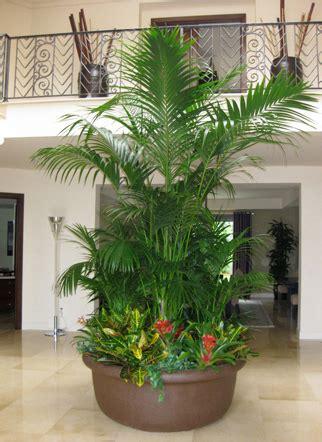 house medialogoswheat designs linda bisnett resesif