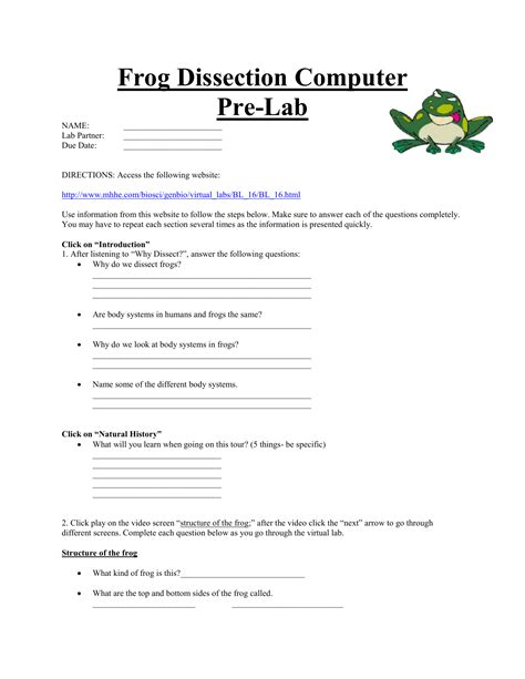earthworm dissection lab conclusion frog dissection lab worksheet the best and most comprehensive worksheets