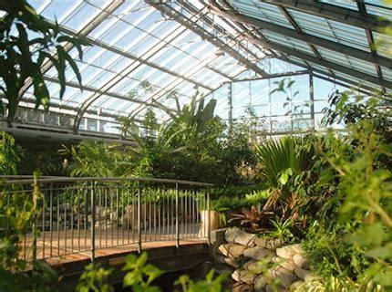 Botanical Gardens Calgary Conservatory Gardens Gardening Courses Calgary Zoo
