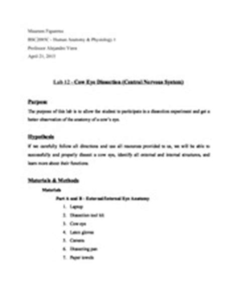 Cow Eye Dissection Worksheet Answers by Cow Eye Dissection Worksheet Answers Abitlikethis