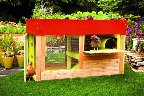 Cabin Plans Modern Book Review Reinventing The Chicken Coop Community Chickens