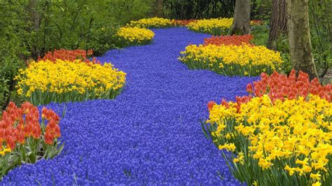 Flowers Of Garden Flower Garden 824766 Walldevil