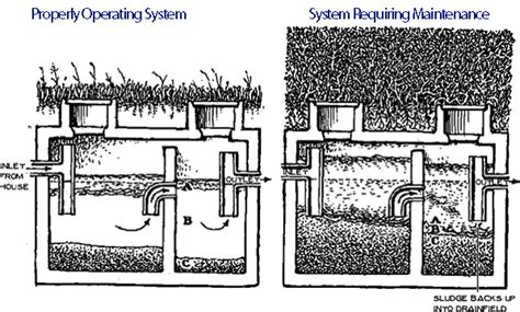 sewer vs septic sewer and septic maintenance in southwest florida