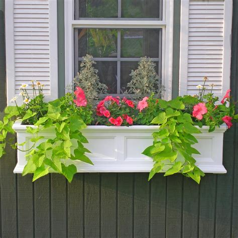 vinyl window boxes planters mayne 4 ft window planter box white with wall
