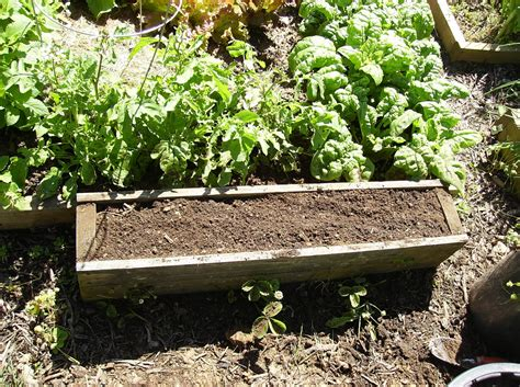 28 Raised Bed Soil Calculator Gardening Buffalo Gardens Amending Soil For Vegetable Garden