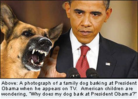 100 why does my dog bark when i leave the house is pastor why does my dog bark at president obama