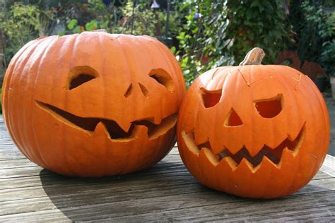 Free Pumpkin Carving Patterns Pumpkin Pattern Free