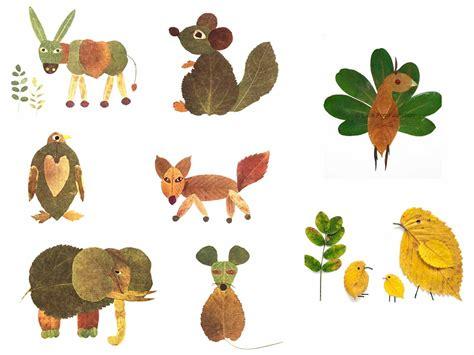 animali con fiori animali e foglie portale branca coccinelle
