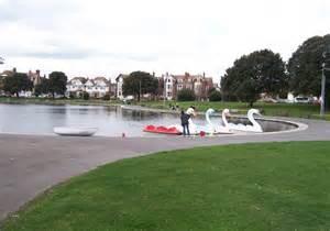 swan boats portsmouth giant swans canoe lake portsmouth 169 colin babb