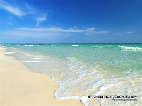 beaches in florida florida beaches florida photo free desktop background nature wildlife