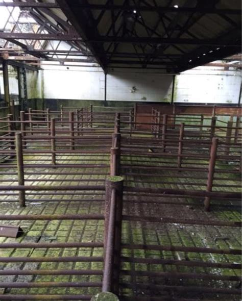 Cattle Sheds For Sale by Cattle Pens For Sale Farm Sheds For Sale Northern