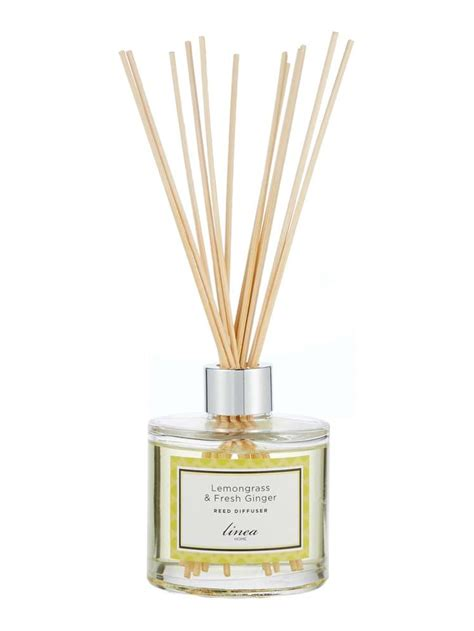 reed diffuser   Design Decoration