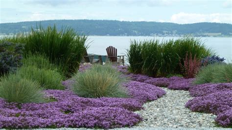 Fire Resistant Rugs For Fireplaces Coan Waterfront Landscape Camano Island Wa Beach Style