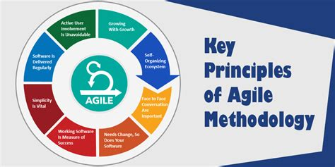 key principles of agile methodology