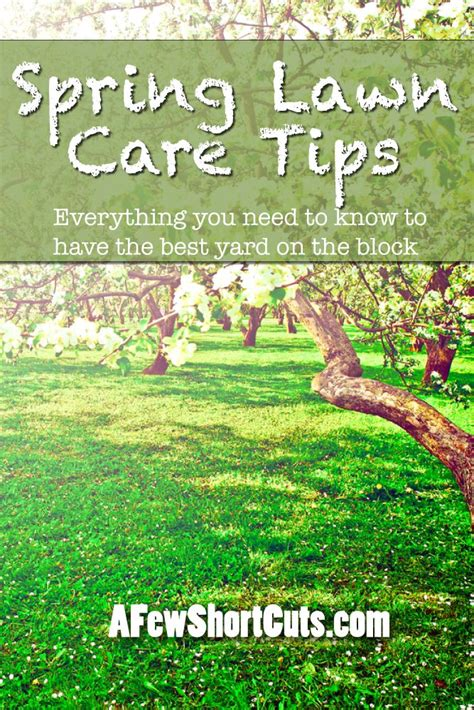 spring landscaping tips 17 best images about lawn care curb appeal on pinterest