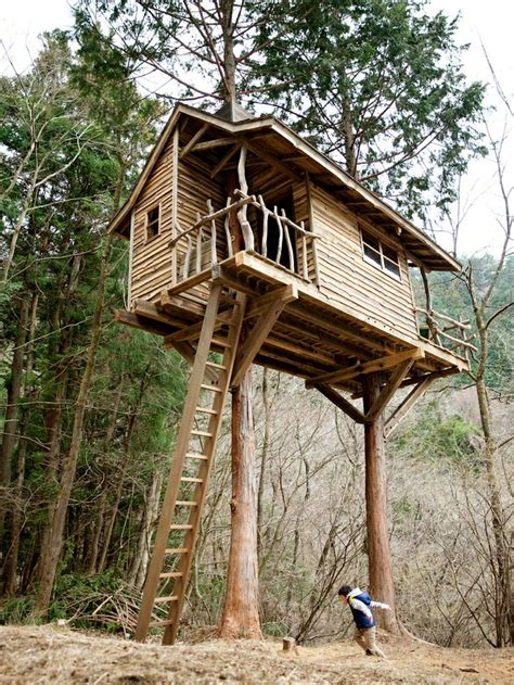 tree house siding ideas an amazing two tree treehouse with rustic ship lap siding and natural branch railings