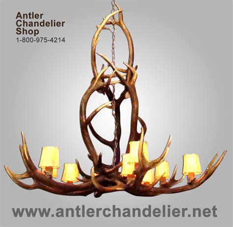 antler chandelier net antler chandelier net 28 images large antler