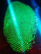 questura di grosseto ufficio passaporti passaporto biometrico pronte pescara frosinone e verona