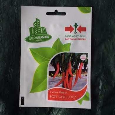 Benih Cabai Hias Bandung jual benih cabai chilli f1 50 biji panah merah
