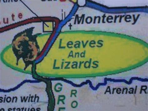 map picture of leaves and lizards arenal volcano cabin