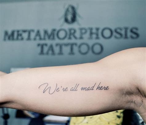 metamorphosis tattoo 25 best ideas about metamorphosis on
