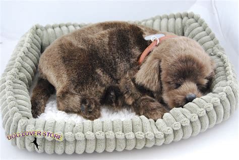 breathing puppy lifelike stuffed dogs manufacturers in lulusoso pictures