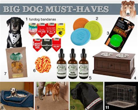 puppy must haves 11 gift ideas for big dogs bbnshops