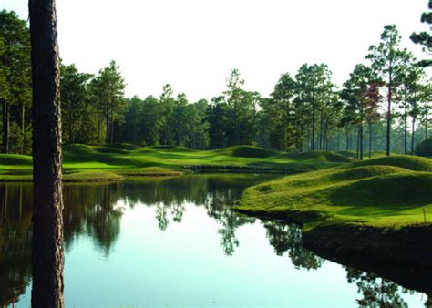 cumberland pine forest country club summerville south packages course details for pine forest country club