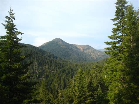 the siskiyou peaks trail from ashland or to mt shasta ca thru the klamath knot books siskiyou mountains