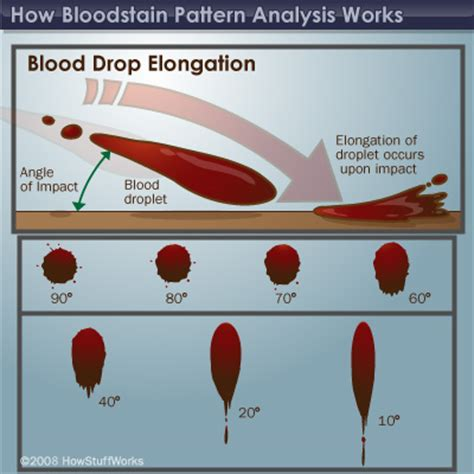 forensics spatter analysis how bloodstain pattern analysis works forensics