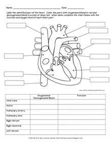 label the heart worksheet davezan
