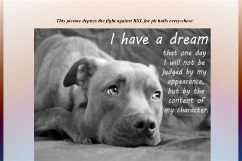 Essay Against Breed Specific Legislation by The Misunderstood Breed