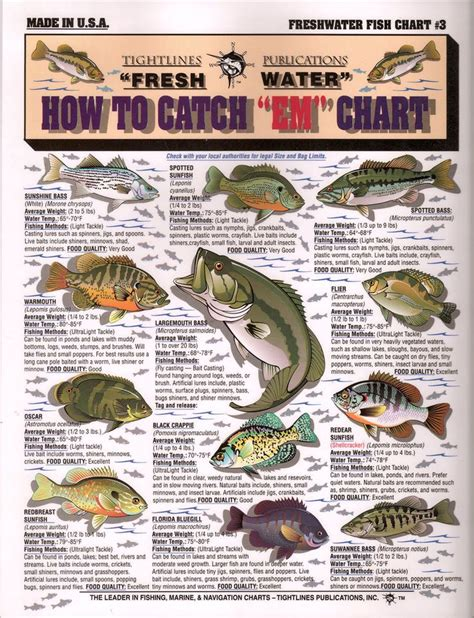 where when and how to catch fish on the east coast of florida classic reprint books fish chart with info on how to catch them